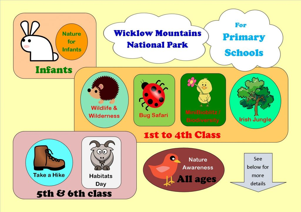 Primary Schools at a glance